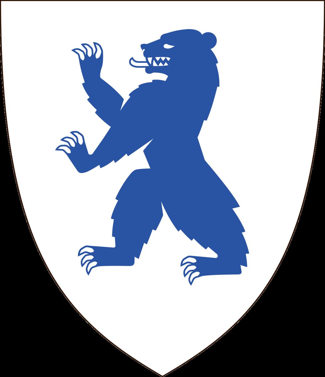 Buskerud fylkeskommune